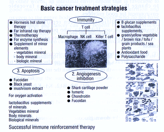 basic cancer treatment strategies