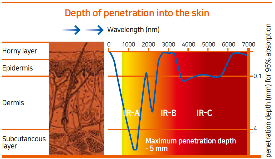 Depth Of Penetration Into Skin