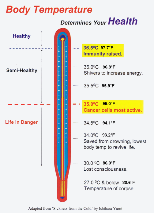 Body Temperature Thermometer