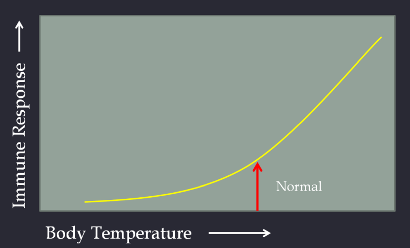 Body Temperature Vs Immune Response