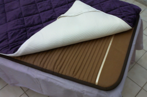 Quantum Energy Pad on Top Bio-Mat