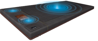 BioAcoustic Mat - Professional - 120V - With Professional Discount