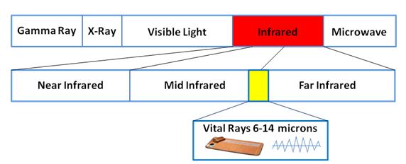 Biomat Human Infrared